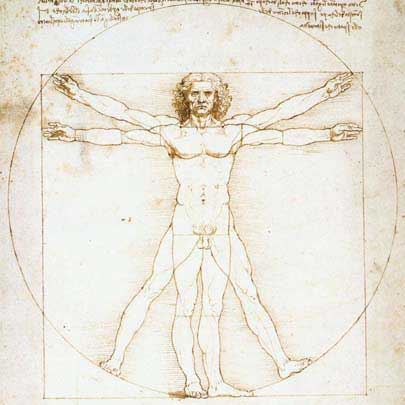 Leonardo's Male Drawing